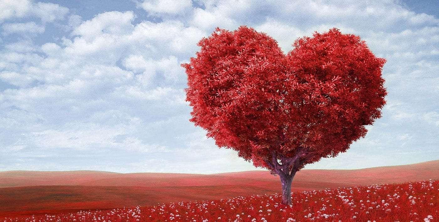 a tree shaped like a red heart