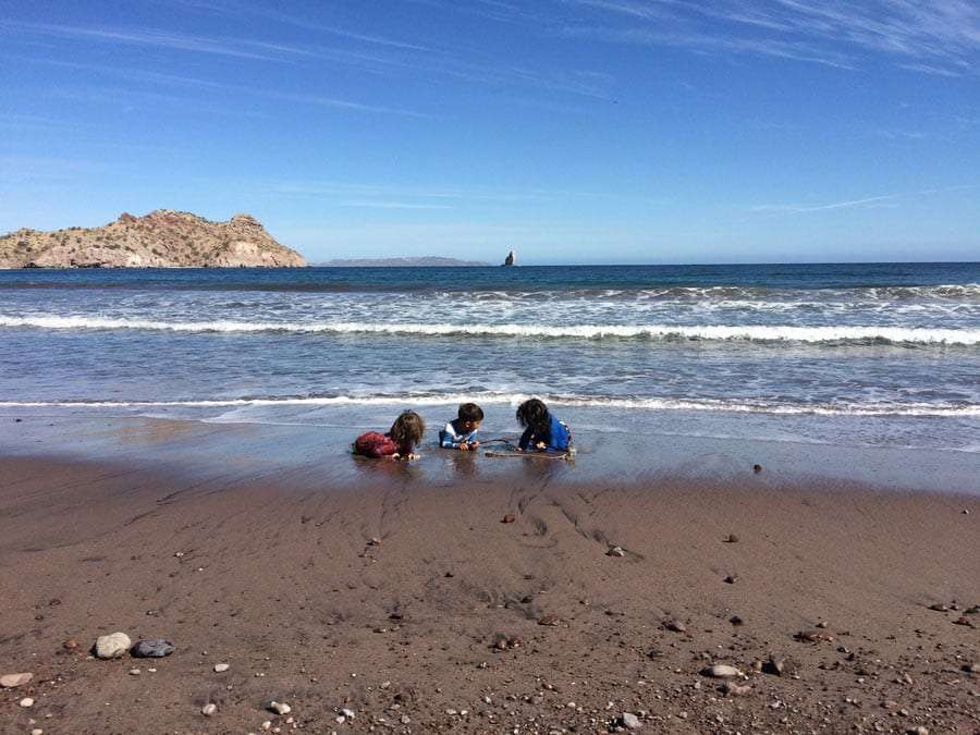 three young boys playing in the tide