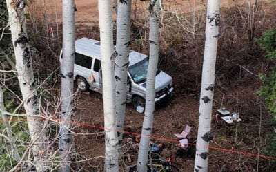 a ford van parked in the aspens of colorado