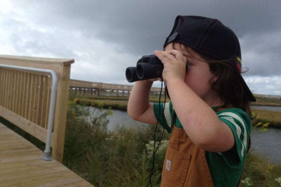 a young boy looking for birds in the marshes near Assateague National Seashore