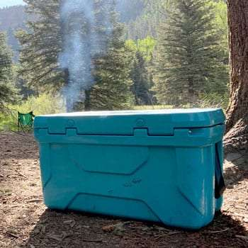 the cooler in the forest