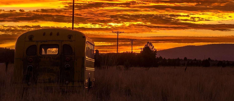 a school bus parked in a field