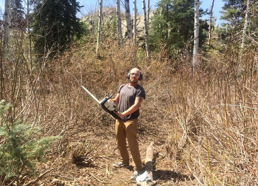 a man, wearing ear and eye protection, holds a chainsaw up in a thicket of willows