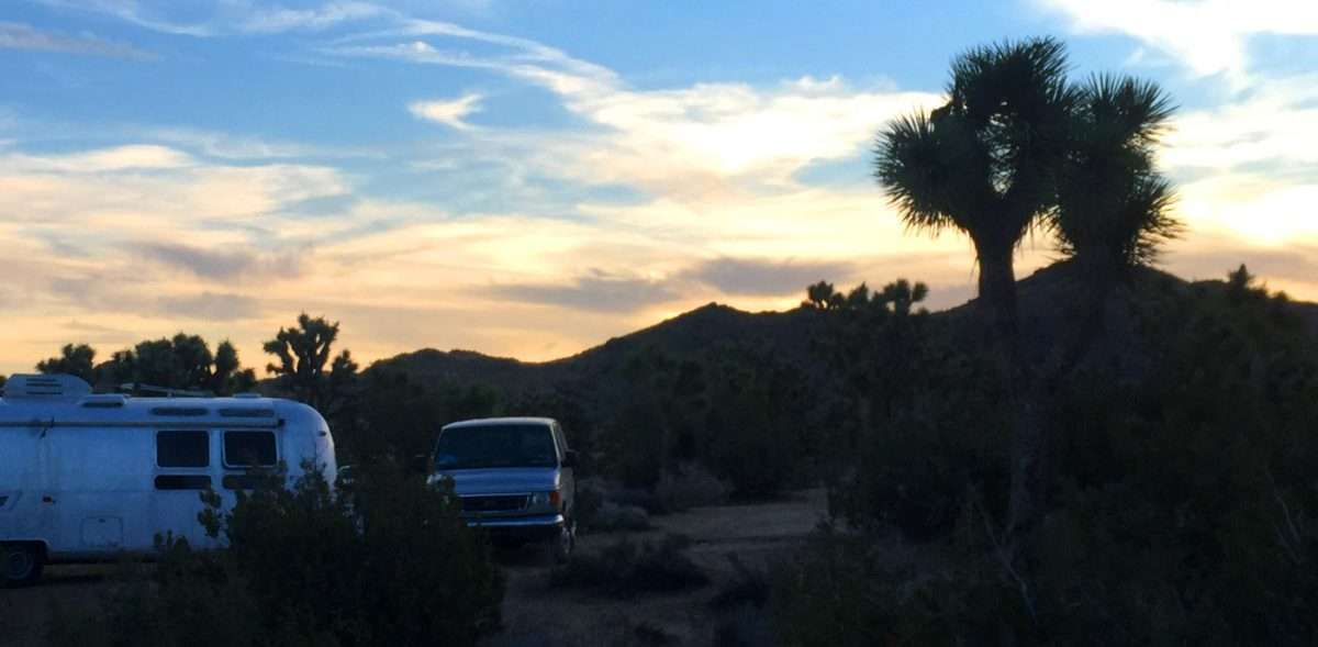 a van and an airstream camp amongst the Joshua Trees