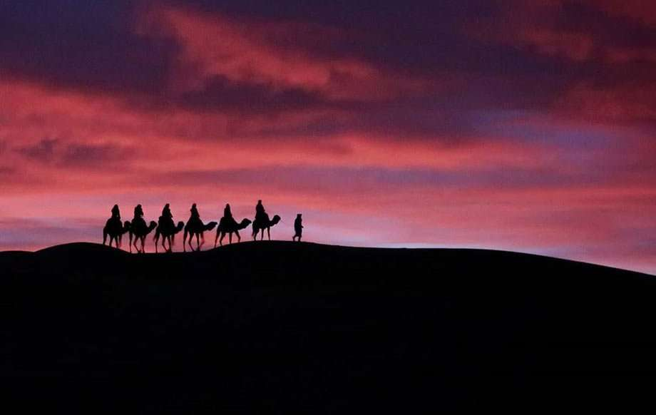silhouettes of people riding camels against a purple sky