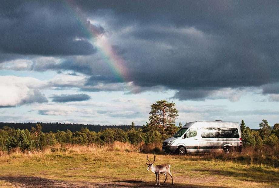 a reindeer hangs around a van, a rainbow courses a stormy sky beyond