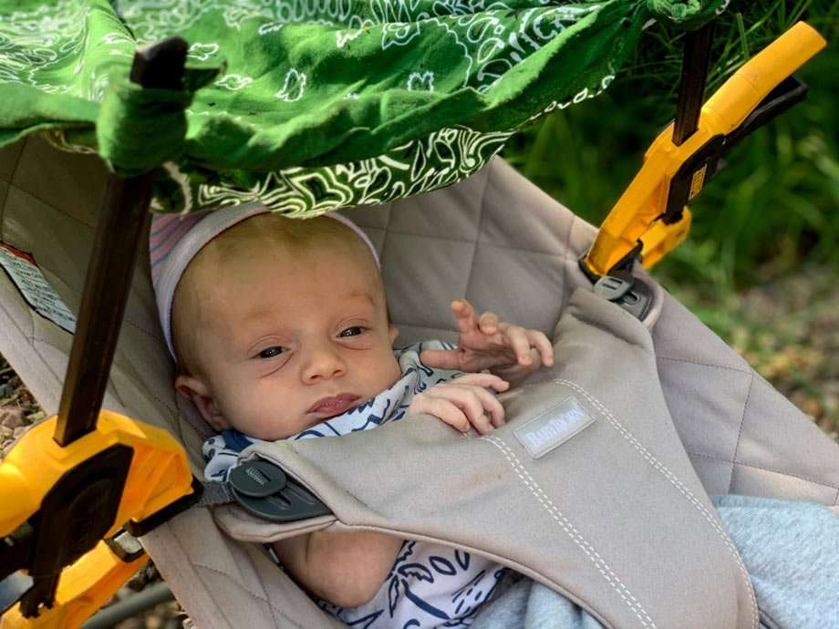 a baby in a baby bouncer, with wood clamps and a handkerchief for a canopy to block the sun from his little eyes
