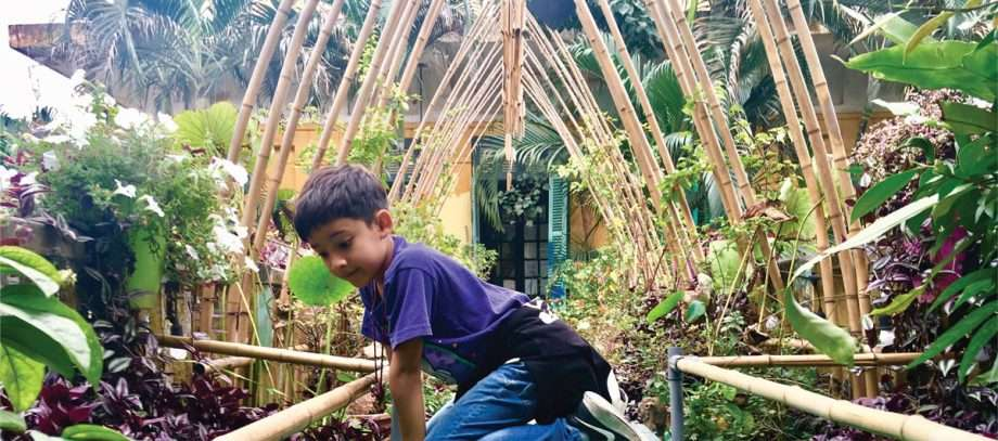 a boy climbs in the bamboo ceiling of a building