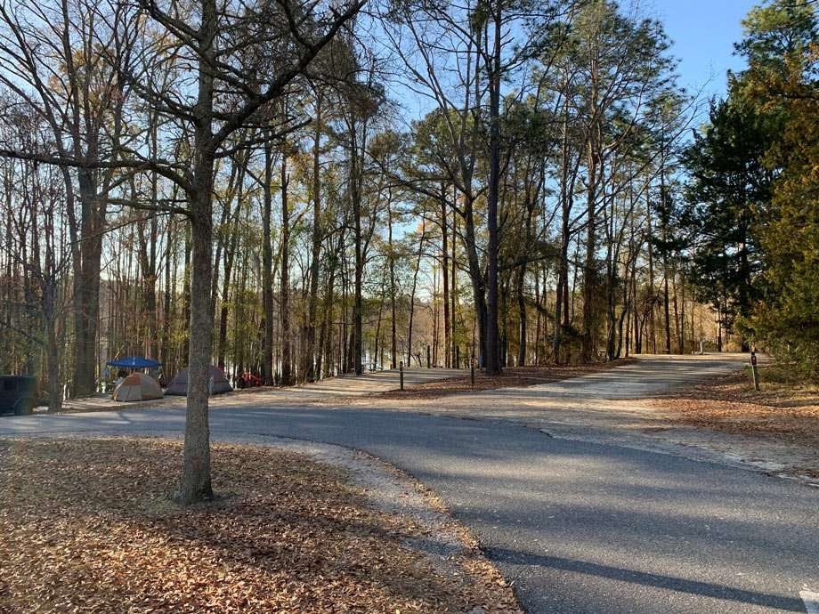 various campsites at George L. Smith State Park in Georgia