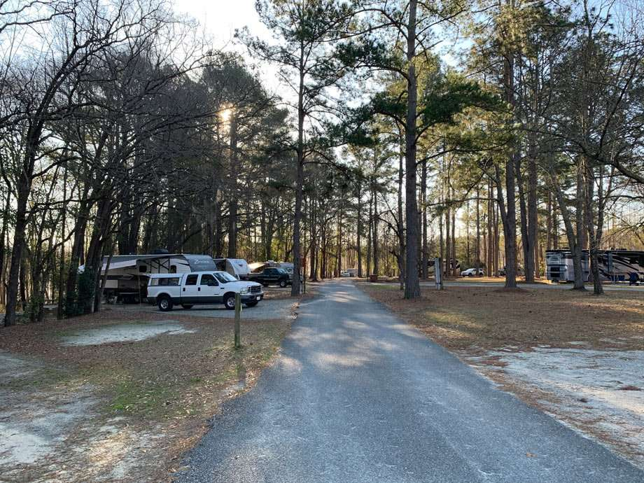 A line of RVs at George L. Smith State Park in Georgia