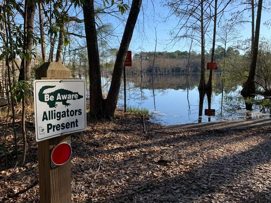 a sign reads Alligators Present near the water at George L. Smith State Park in Georgia