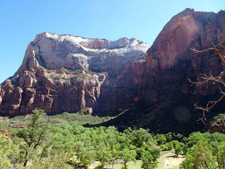 colorful cliffs and vibrant cottonwood trees at Zion
