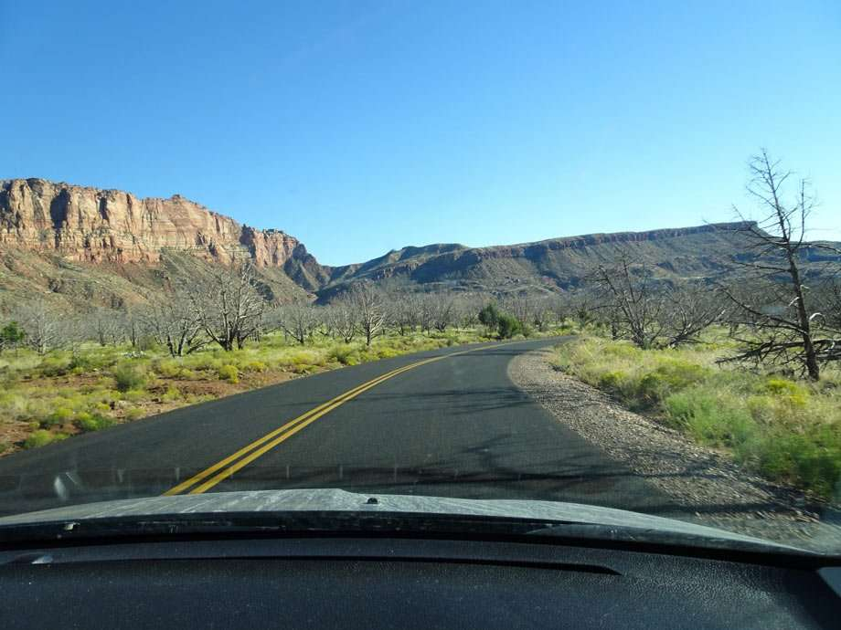 a two lane road extends into Zion's cliffs and desert shrubs