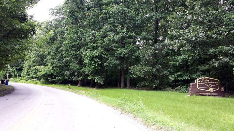 a smooth road traverses thick hardwood forests