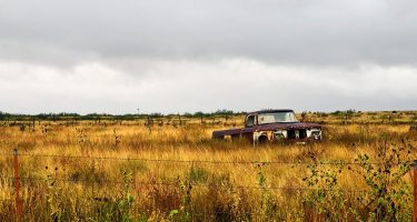 an old truck in a field in TX somewhere