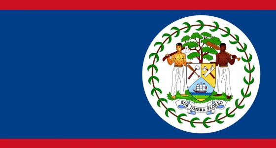 the belizean flag