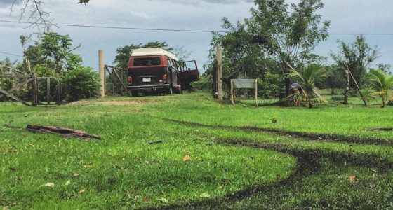 a vw bus tearing up the grass in Belize