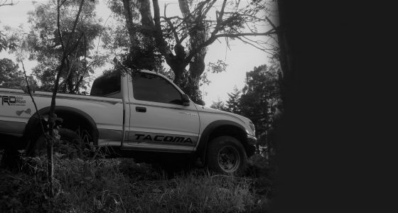an old toyota pickup, black and white, in a forest