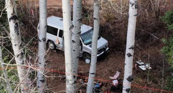 a van parkred within the aspens of colorado's san juan moutains