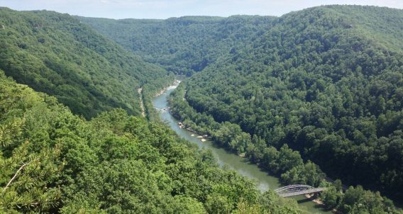 forests over rolling hills with a river running through it all