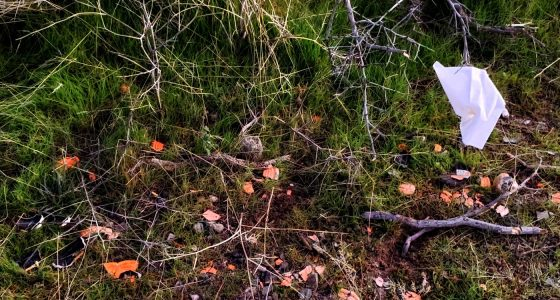 trash and clay pigeons shattered across a national forest