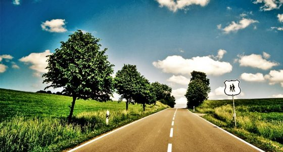 a road meanders off into the distance between tree-dotted meadows on a summer sky's day, a highway sign indicates children in school ahead