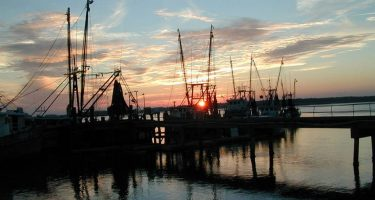 sunset over the docks near Beaufort, SC