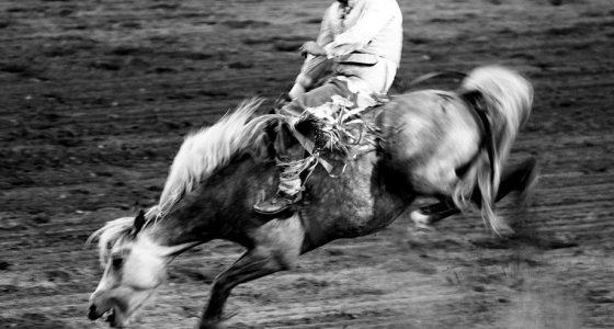 a cowboy rides a hysterical bronco