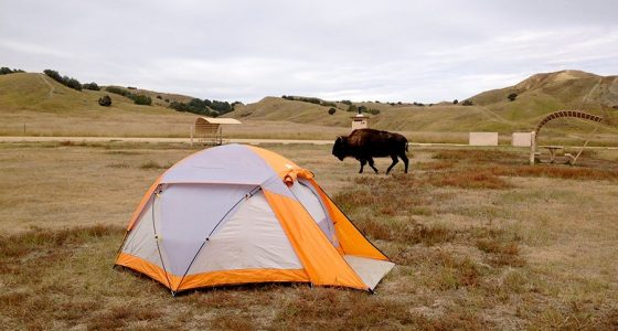 a bright tent against the dull of montana backdrop