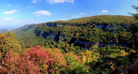 the colors of autumn fill a mountainous landscape