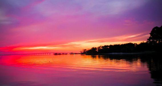 sunset, water, mangroves